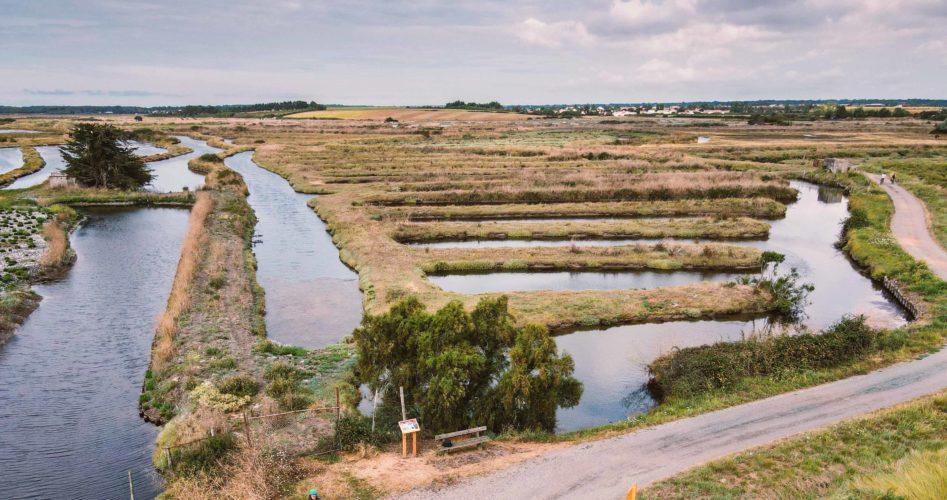 Marais Salants des Sables d'Olonne